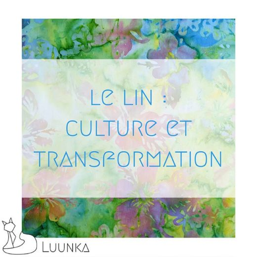 blog-mode-luunka-lin-culture-transformation